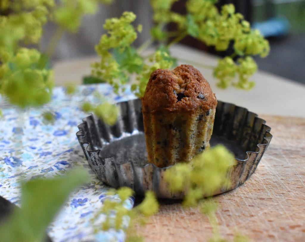 Gâteau au surplus de levain, chicorée et chocolat par l'Académie de la Fermentation
