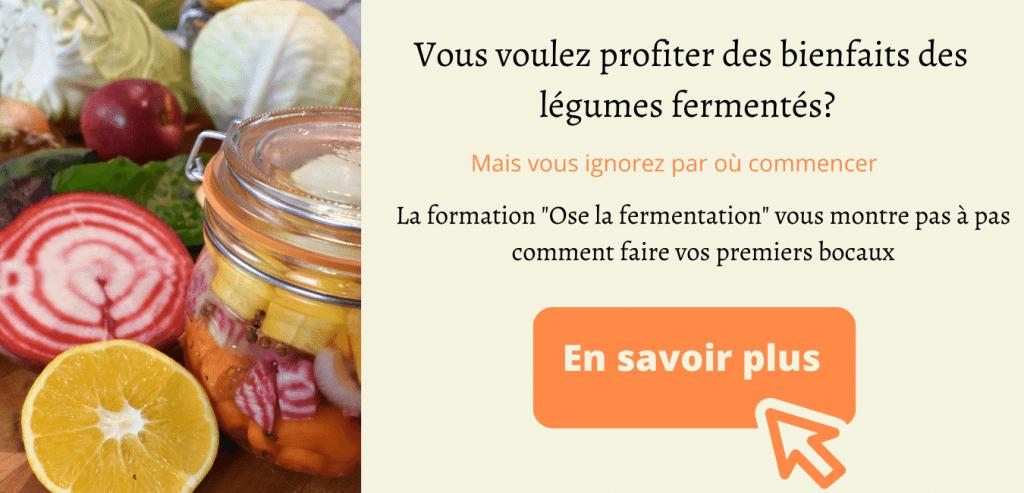 fomation fermentation par l'académie fermentation