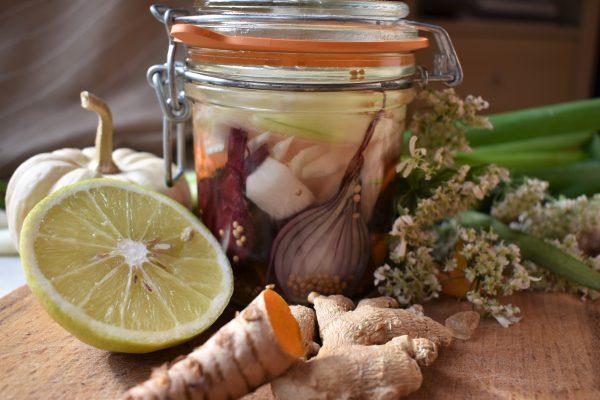 atelier introduction fermentation
